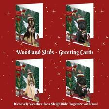 Christmas Woodland Sled Dog Cat Pet Photo Greeting Invitation Card Pack of 20