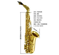 Professional TaiShan 5000 Model Alto saxophone High F# Sax Germany Mouth W/Case
