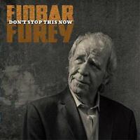 Finbar Furey - Don't Stop This Now [CD]