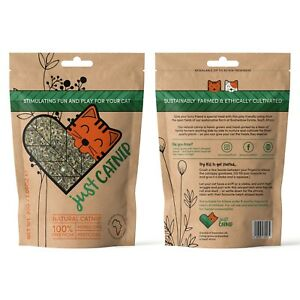 ORGANIC CATNIP for Cats (30g) Toys for Cats, Dried, Strong Cat Nip Treat & Gift