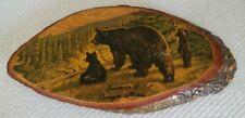 Vintage Wooden Tree Bark Plaque ~ Mother Bear & Cubs ~ Souvenir Bangor, Maine