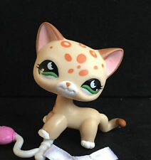 Littles Pet Shop LPS Cat Short Hair Child Girl Loose Auction Figures Cute