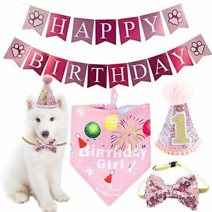 BIPY Dog 1st Birthday Hat Bandana Bowite Banner Set for Girls Small Medium Pets