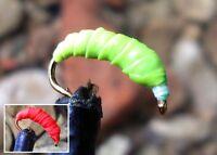Gilchrist Fliegen. 3 x LARVEN NYMPHEN. Auswahl von Farben & Größen