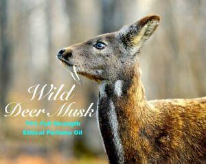 3ml Pure Wild Deer Musk Perfume oil