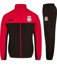 Chicos Liverpool Chándal Edad 12-13