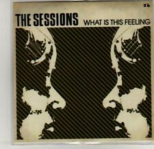 (K439) The Sessions, What is this Feeling - DJ CD