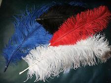 lot de 4 grandes plumes bleu rouge blanche et noire