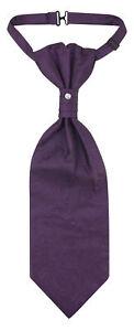 Vesuvio Napoli PreTied ASCOT Paisley DARK PURPLE Color Cravat Men's Neck Tie