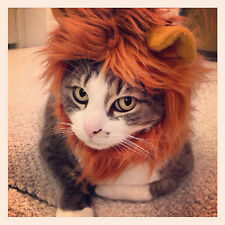 "Cat Lion Mane, Cat Lion Costume size 7-11"" collar"