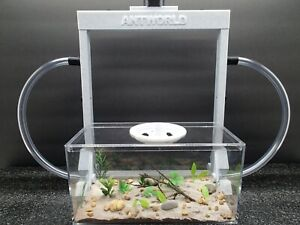 AntWorldUSA Vertical Sand Ant Farm with Habitat & Ants (Marble Color)