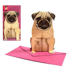 High quality Pop Up-map / 3-D-map /Folding card from a Pug + pink Envelope
