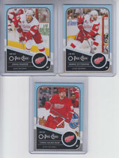 11/12 OPC Detroit Red Wings Tomas Holmstrom Beard Variation card #36