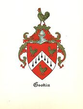 *Great Coat of Arms Gookin Family Crest genealogy, would look great framed!