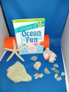 Ocean Fun Activity Book