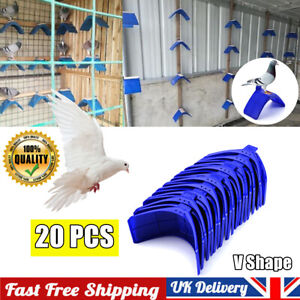 20Pcs Perches V Pigeon Bird Dove Pet Rest Stand Roost Frame Dwelling Kit UK Blue