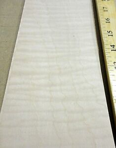 """Maple Curly Tiger Figured wood veneer sheets 4"""" x 59"""" with paper backer 1/40"""""""