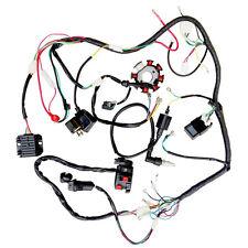 Fantastic Wire Harness Electrics FS945 ATV QUAD Dirt Bikes 200CC 250CC Cdi Coil