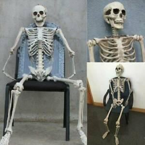 Poseable Human Skeleton Prop Halloween Party Indoor/Outdoor Decor Hot*