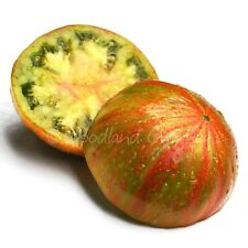 Summer Of Love Tomato Seeds Green Red Striped Organic Beefsteak Heirloom USA