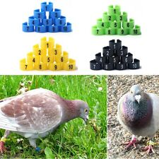 10mm Leg Rings 100pcs Pigeon PRINT Numbered 1-100 Poultry Bands Bird Parrot a