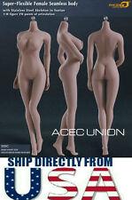 Phicen 1/6 Super Flexible Seamless Female Body L Bust SUNTAN S09C Steel Skeleton