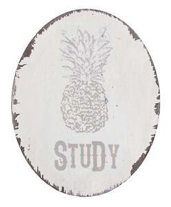 SPLOSH FIESTA Pinapple Study Home Wall Door Plaque Sign Home Decor