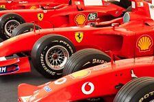 Ferrari F1 Formula One Automotive Car Wall Art Giclee Canvas Print Photo (210)