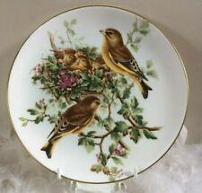 Coalport bird decor plate with GreenFinch by John Gould, plate no.6, bird plate