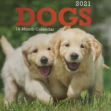 Dogs Calendar 2021 Wall Hanging Puppy Dog Lovers 10X11