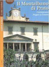 Il Montalbano di Prato Carmignano Poggio a Caiano - Octavo Firenze 2000