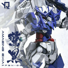ANCHORET Gundam 1/100 MG AMAZING EXIA PPGN-001 Resin Conversion Original Kit
