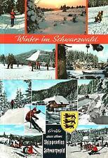Selva negra-montañismo-slalom-trineo - sclittenkutsche-sol - 1980