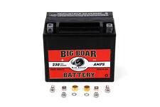 Harley Davidson Big Boar Mini Battery BB312