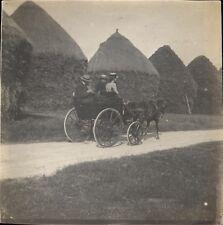 Snapshot Promenade à Lusigny en 1910 foin hommes femme calèche cheval poney