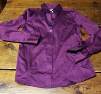 Banana Republic Non-Iron Fitted Long Sleeve  Wine Shirt Blouse Women's Size 2
