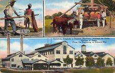 Linen Postcard Multiple Views of Milling of Sugar in Cuba~120891