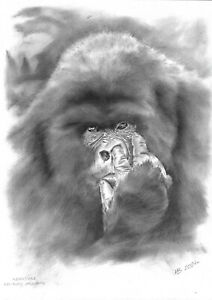 original drawing A3 1MR oil dry brush Realism animal gorilla king-kong ponders