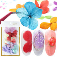 50pcs Nail Dried Flower 3d Nail Art Decorations Stickers Decals UV Gel Tips DIY
