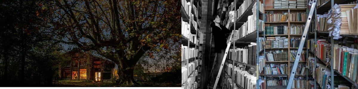 Librairie et Caetera