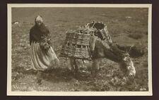 Ireland Woman with donkey RP PPC gathering heather?