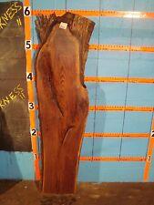 """# 8447  Black Walnut Live Edge Slab mantel craft wood L 66 1/4"""" W 18 1"""" T 2 7/8"""""""