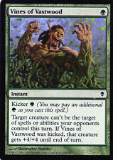 Vines of Vastwood / Ranken des Riesenholzes  - Zendikar - Magic - NM - ENG