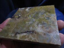 "Dinosaur Coprolite ( Poop ) Accent Tile 4"" X 4"" - Custom Cut - One Of A Kind"
