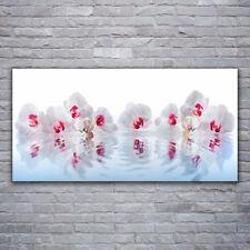 Tulup Wandbilder Glasbilder Dekobild 120x60 Blumen Kunst
