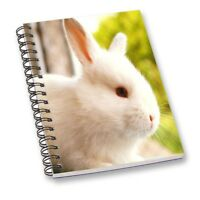 New Rabbit A5 Colorful Spiral Cover Notebook Diary Journal School Notepad