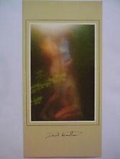 Carte Postale Double   DAVID  HAMILTON   Postcard  Femme  Woman