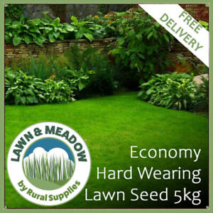 Lawn Grass Seed 5KG Economy Mix- HIGH QUALITY AFFORDABLE SEED GARDENS BULK