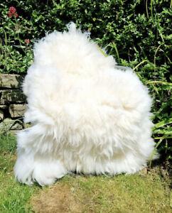 XXXXL HUGE British Cream Sheepskin Rug - 125cm by 90cm A++ (2398)