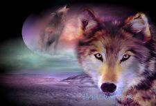 HD Print Oil Painting Wall Art on Canvas J344.Moon Wolf 12x18inch Unframed